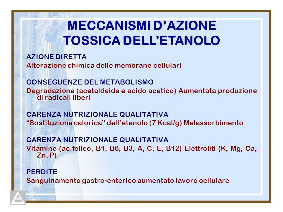 AZIONE DIRETTA Alterazione chimica delle membrane cellulari CONSEGUENZE DEL METABOLISMO Degradazione (acetaldeide e acido acetico) Aumentata produzione di radicali liberi CARENZA NUTRIZIONALE QUALITATIVA Sostituzione calorica delletanolo (7 Kcal/g) Malassorbimento CARENZA NUTRIZIONALE QUALITATIVA Vitamine (ac.folico, B1, B6, B3, A, C, E, B12) Elettroliti (K, Mg, Ca, Zn, P) PERDITE Sanguinamento gastro-enterico aumentato lavoro cellulare MECCANISMI DAZIONE TOSSICA DELLETANOLO