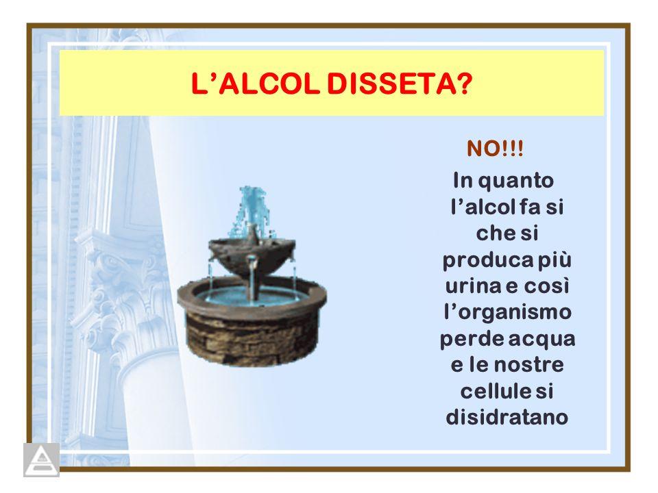 LALCOL DISSETA? NO!!! In quanto lalcol fa si che si produca più urina e così lorganismo perde acqua e le nostre cellule si disidratano