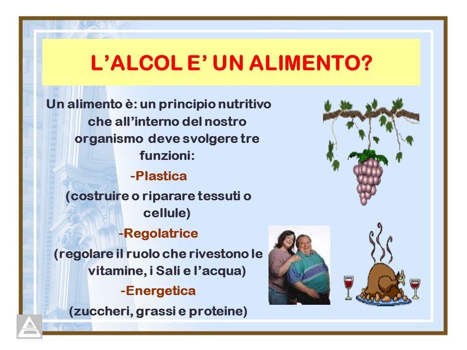 LALCOL E UN ALIMENTO? Un alimento è: un principio nutritivo che allinterno del nostro organismo deve svolgere tre funzioni: -Plastica (costruire o rip