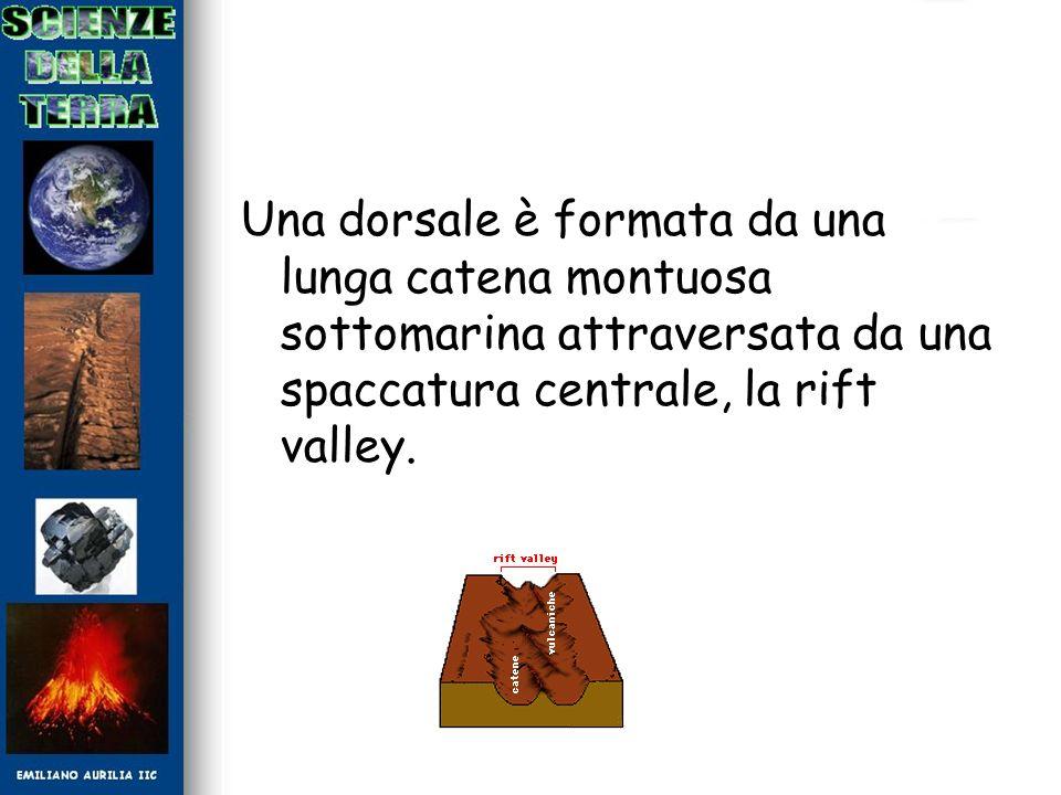 Una dorsale è formata da una lunga catena montuosa sottomarina attraversata da una spaccatura centrale, la rift valley.