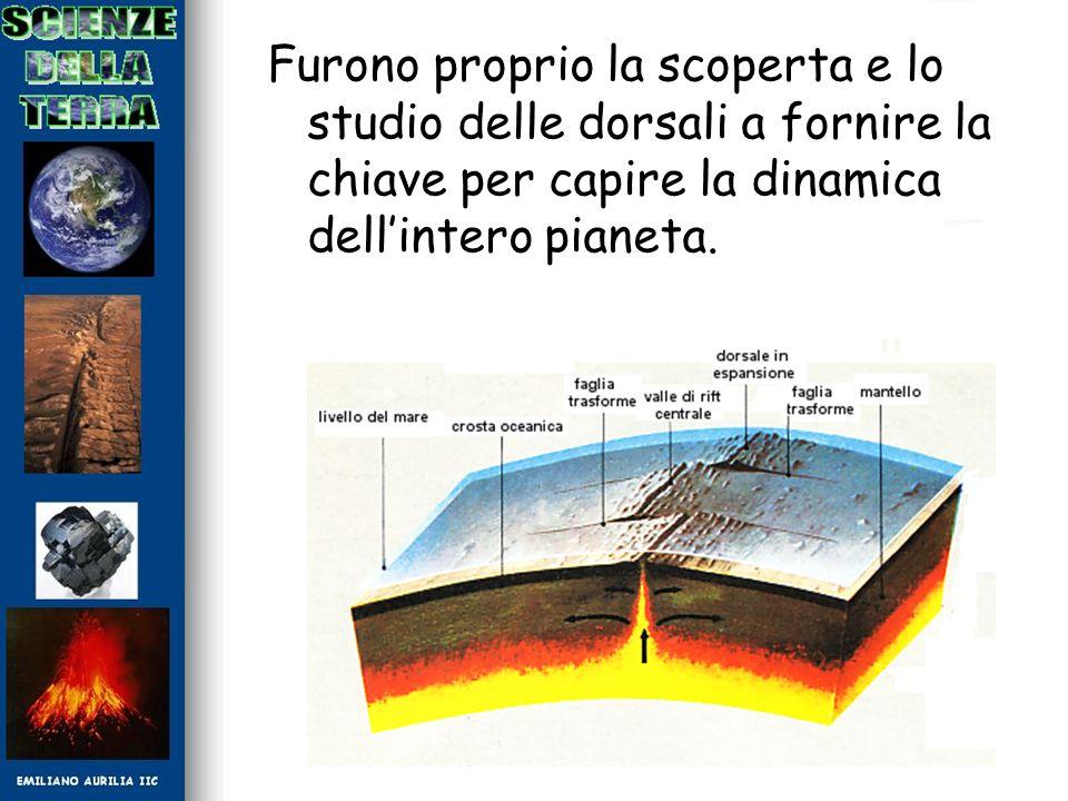 Furono proprio la scoperta e lo studio delle dorsali a fornire la chiave per capire la dinamica dellintero pianeta.