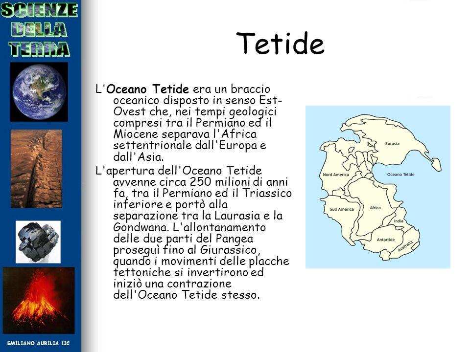 Tetide L'Oceano Tetide era un braccio oceanico disposto in senso Est- Ovest che, nei tempi geologici compresi tra il Permiano ed il Miocene separava l