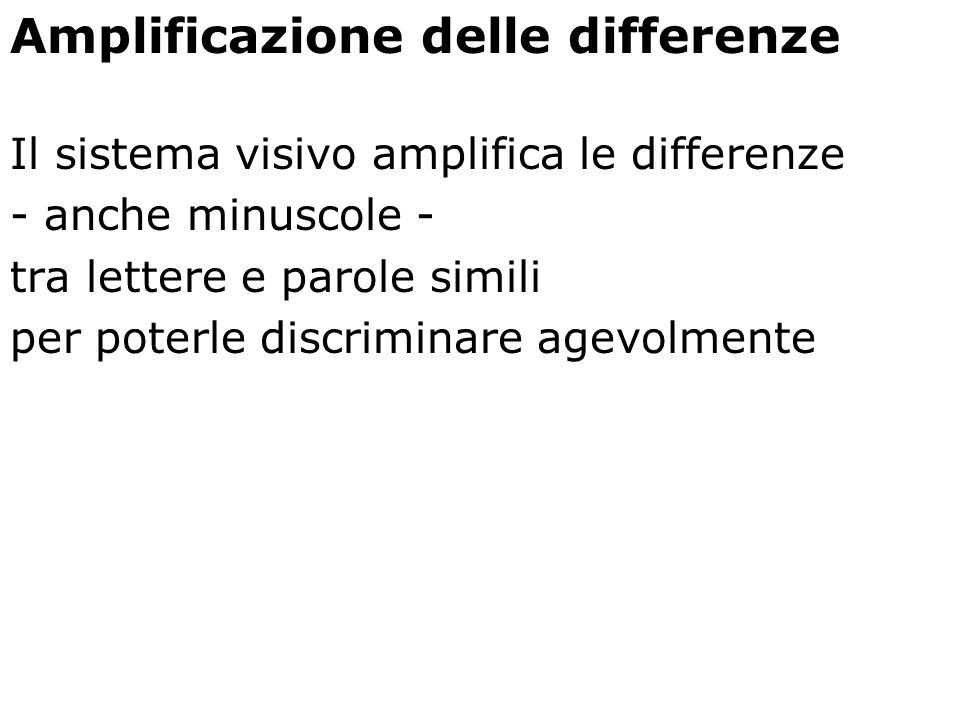 Amplificazione delle differenze Il sistema visivo amplifica le differenze - anche minuscole - tra lettere e parole simili per poterle discriminare age