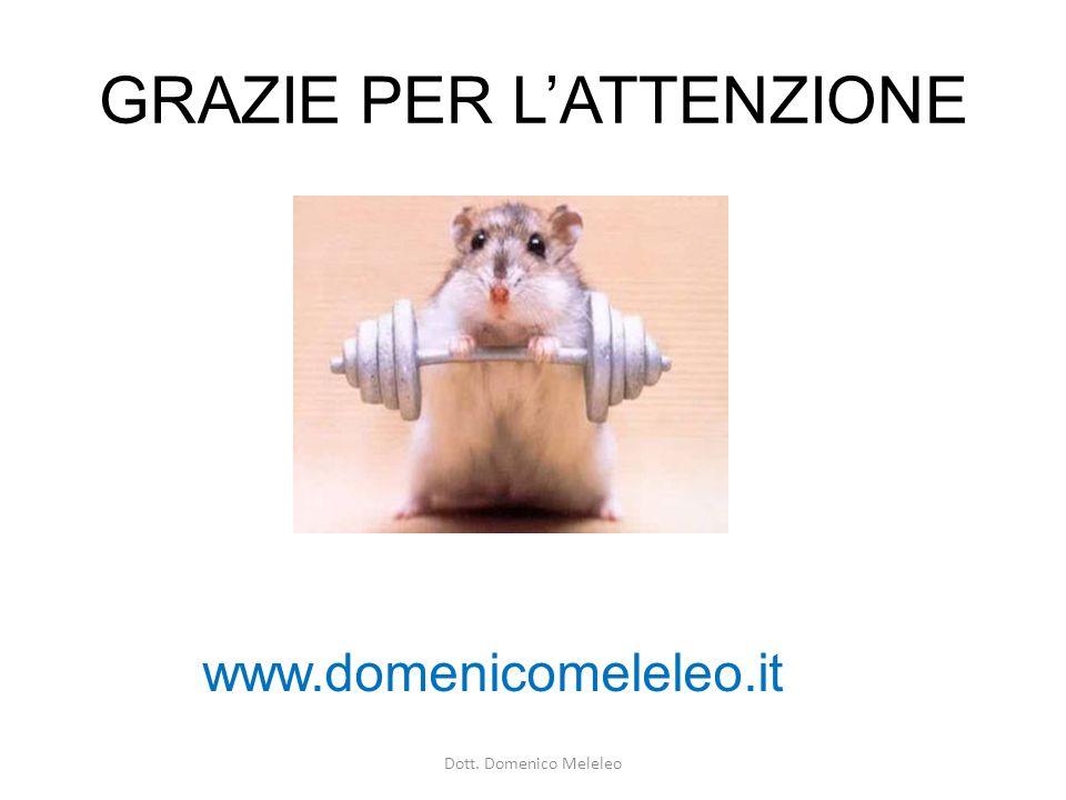 GRAZIE PER LATTENZIONE www.domenicomeleleo.it Dott. Domenico Meleleo
