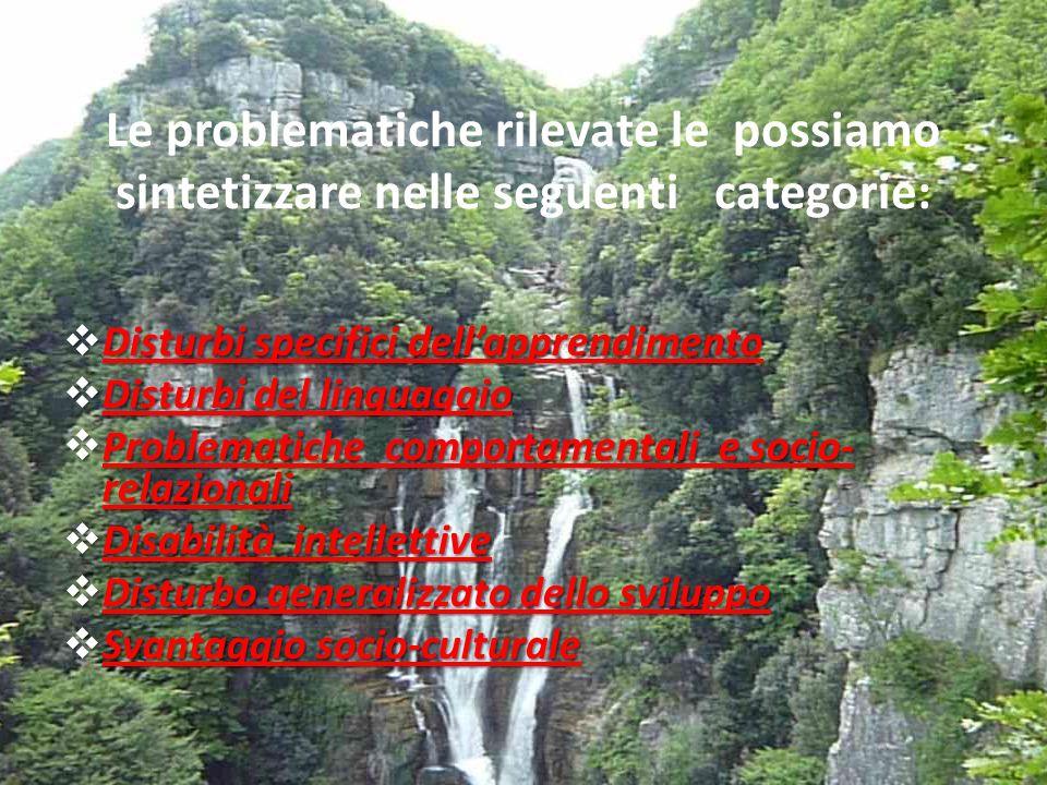 Le problematiche rilevate le possiamo sintetizzare nelle seguenti categorie: Disturbi specifici dellapprendimento Disturbi specifici dellapprendimento Disturbi specifici dellapprendimento Disturbi specifici dellapprendimento Disturbi del linguaggio Disturbi del linguaggio Disturbi del linguaggio Disturbi del linguaggio Problematiche comportamentali e socio- relazionali Problematiche comportamentali e socio- relazionali Problematiche comportamentali e socio- relazionali Problematiche comportamentali e socio- relazionali Disabilità intellettive Disabilità intellettive Disabilità intellettive Disabilità intellettive Disturbo generalizzato dello sviluppo Disturbo generalizzato dello sviluppo Disturbo generalizzato dello sviluppo Disturbo generalizzato dello sviluppo Svantaggio socio-culturale Svantaggio socio-culturale Svantaggio socio-culturale Svantaggio socio-culturale