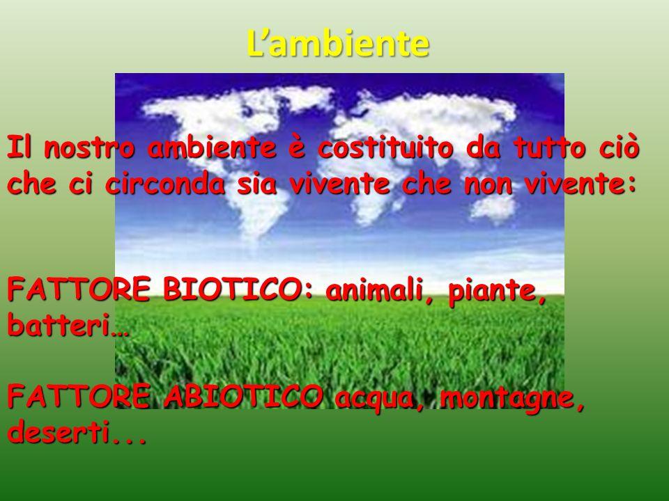 Lambiente Il nostro ambiente è costituito da tutto ciò che ci circonda sia vivente che non vivente: FATTORE BIOTICO: animali, piante, batteri… FATTORE