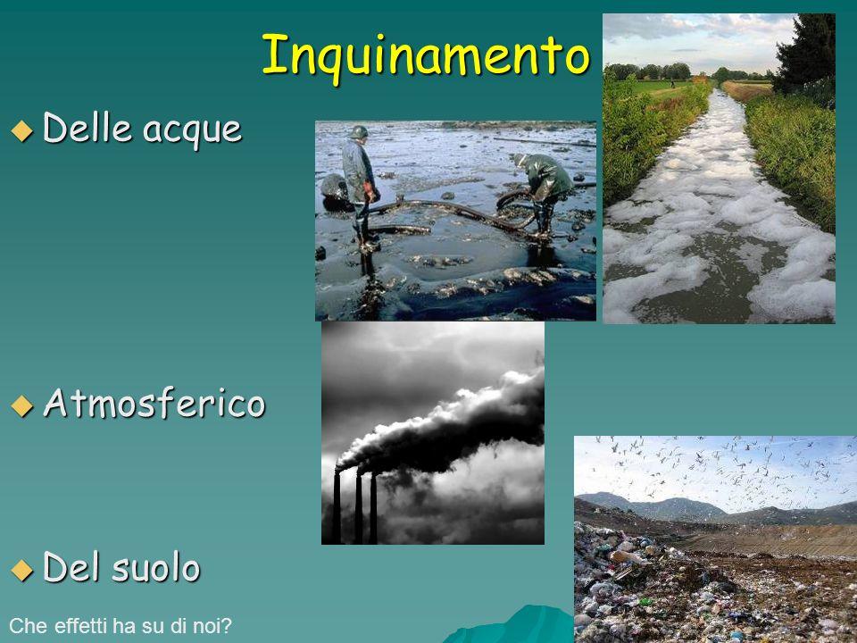 Inquinamento Delle acque Delle acque Atmosferico Atmosferico Del suolo Del suolo Che effetti ha su di noi?