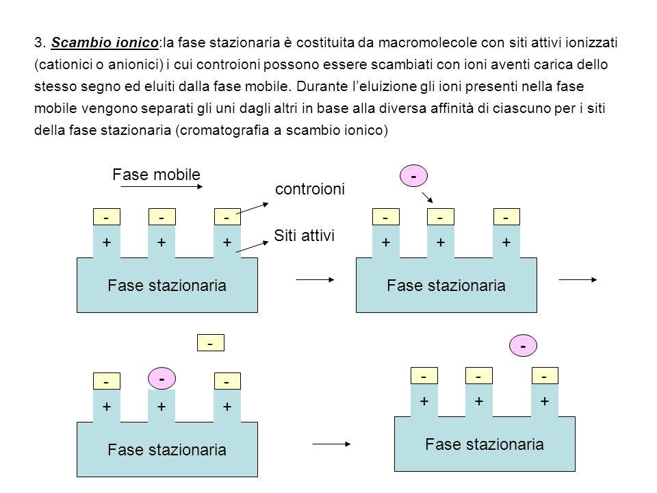 Fase stazionaria 3. Scambio ionico:la fase stazionaria è costituita da macromolecole con siti attivi ionizzati (cationici o anionici) i cui controioni
