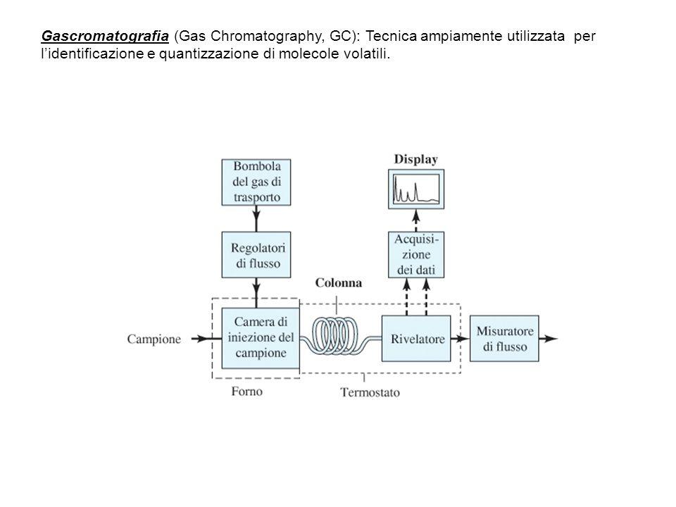 Gascromatografia (Gas Chromatography, GC): Tecnica ampiamente utilizzata per lidentificazione e quantizzazione di molecole volatili.