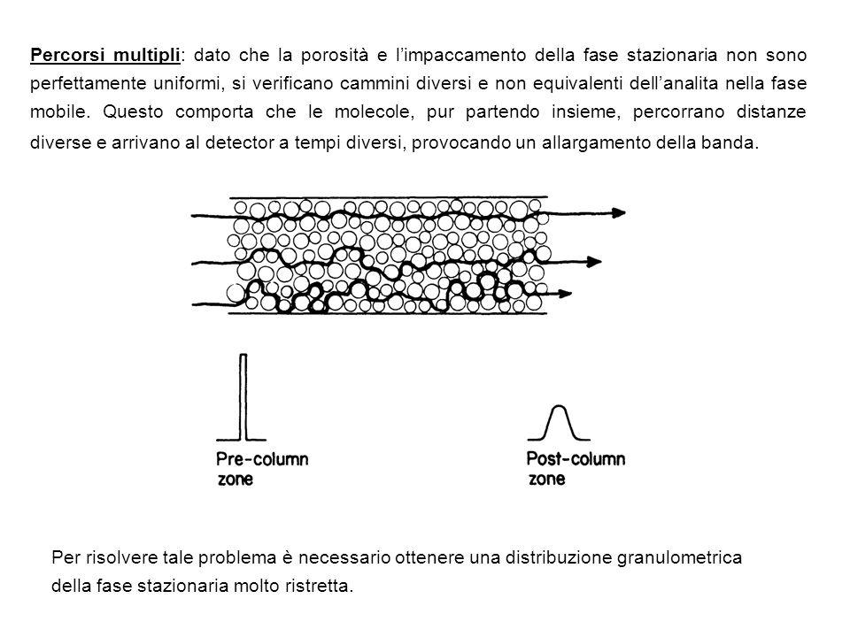 Percorsi multipli: dato che la porosità e limpaccamento della fase stazionaria non sono perfettamente uniformi, si verificano cammini diversi e non eq