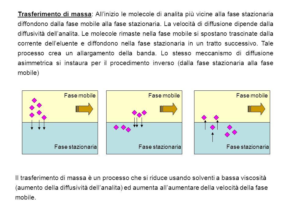 Trasferimento di massa: Allinizio le molecole di analita più vicine alla fase stazionaria diffondono dalla fase mobile alla fase stazionaria. La veloc