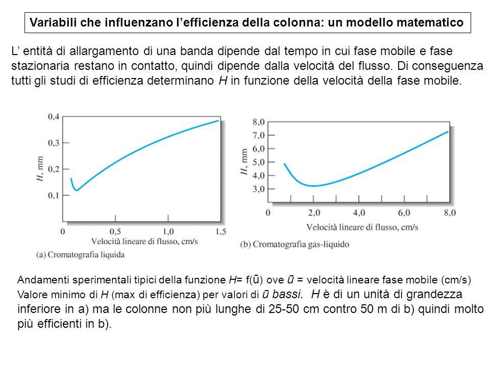 Variabili che influenzano lefficienza della colonna: un modello matematico Andamenti sperimentali tipici della funzione H= f( ū ) ove ū = velocità lin