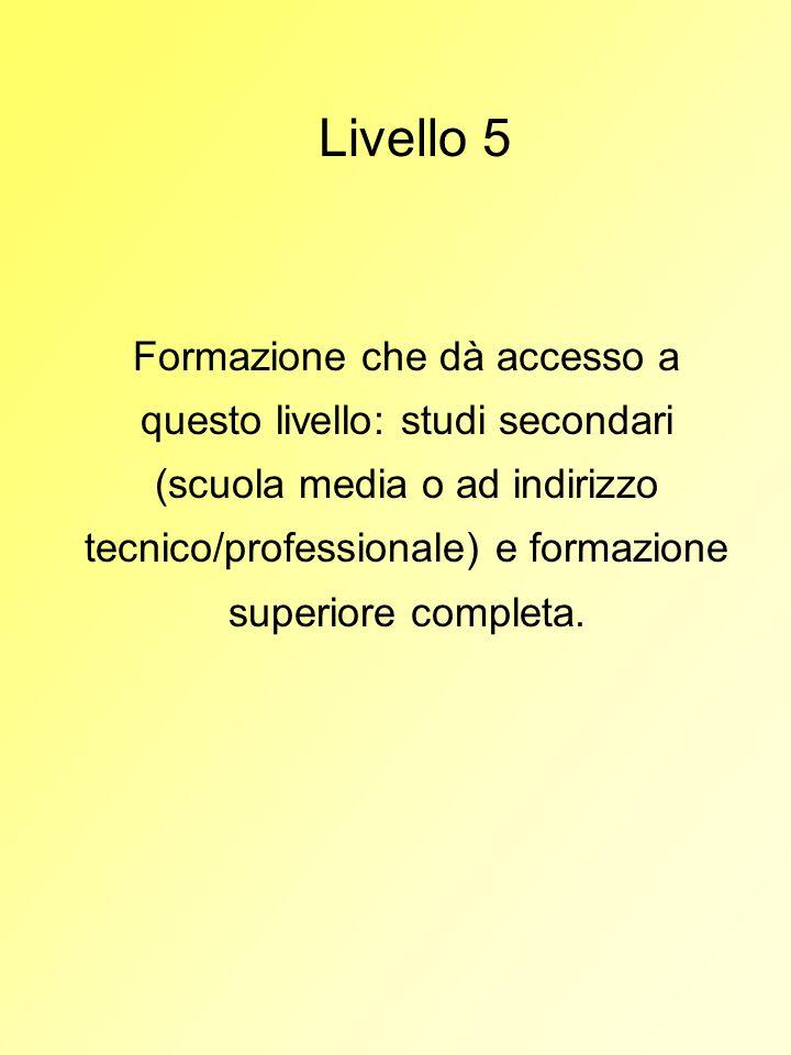 Livello 5 Formazione che dà accesso a questo livello: studi secondari (scuola media o ad indirizzo tecnico/professionale) e formazione superiore compl