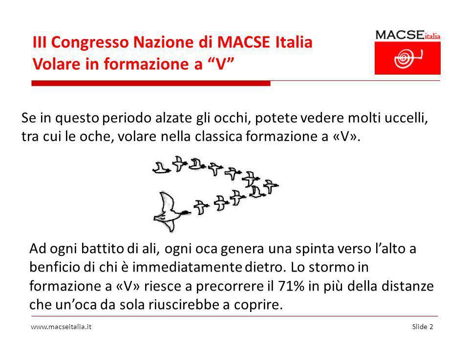 Slide 2www.macseitalia.it III Congresso Nazione di MACSE Italia Volare in formazione a V Se in questo periodo alzate gli occhi, potete vedere molti uccelli, tra cui le oche, volare nella classica formazione a «V».