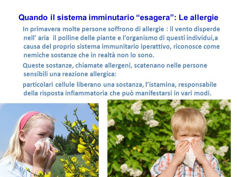 Quando il sistema imminutario esagera: Le allergie In primavera molte persone soffrono di allergie : il vento disperde nell aria il polline delle piante e lorganismo di questi individui,a causa del proprio sistema immunitario iperattivo, riconosce come nemiche sostanze che in realtà non lo sono.