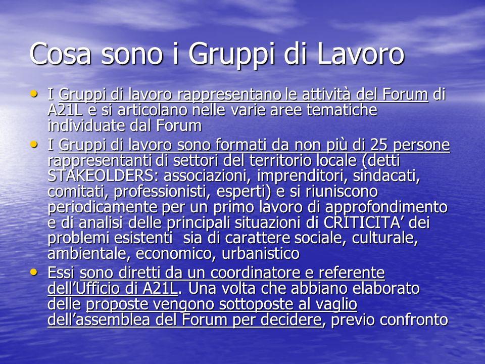 Cosa sono i Gruppi di Lavoro I Gruppi di lavoro rappresentano le attività del Forum di A21L e si articolano nelle varie aree tematiche individuate dal