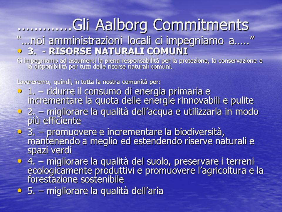 ………….Gli Aalborg Commitments …noi amministrazioni locali ci impegniamo a….. 3. - RISORSE NATURALI COMUNI 3. - RISORSE NATURALI COMUNI Ci impegniamo ad