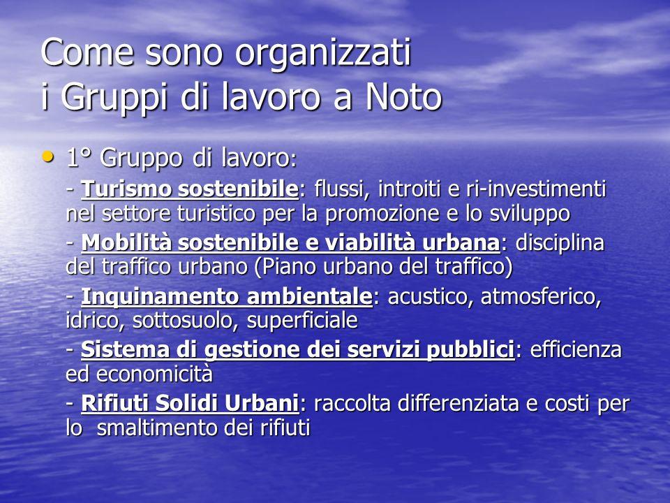 Come sono organizzati i Gruppi di lavoro a Noto 1° Gruppo di lavoro : 1° Gruppo di lavoro : - Turismo sostenibile: flussi, introiti e ri-investimenti