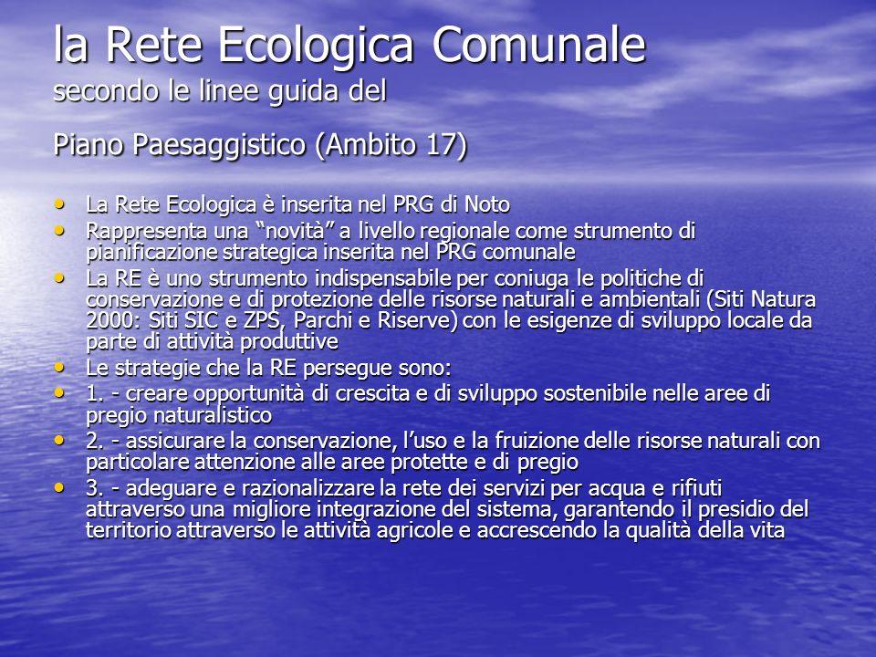 la Rete Ecologica Comunale secondo le linee guida del Piano Paesaggistico (Ambito 17) La Rete Ecologica è inserita nel PRG di Noto La Rete Ecologica è