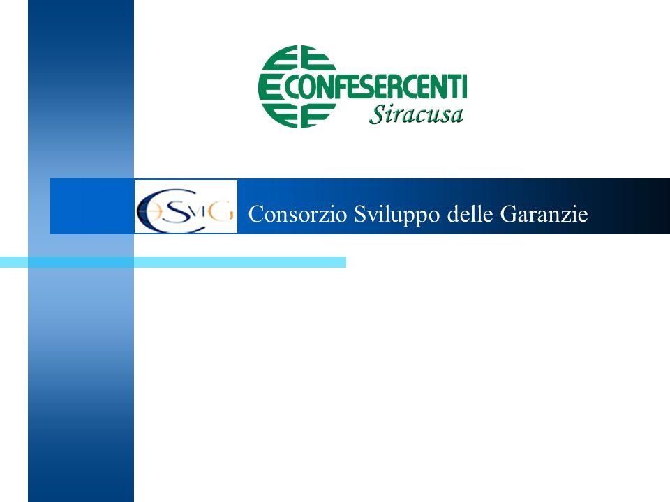 1. Consorzio Sviluppo delle Garanzie