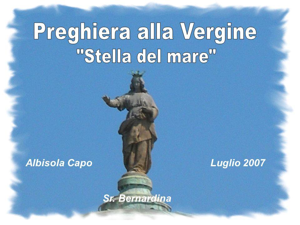 Albisola CapoLuglio 2007 Sr. Bernardina