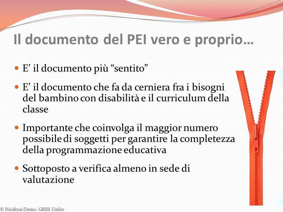 Il documento del PEI vero e proprio… E il documento più sentito E il documento che fa da cerniera fra i bisogni del bambino con disabilità e il curric