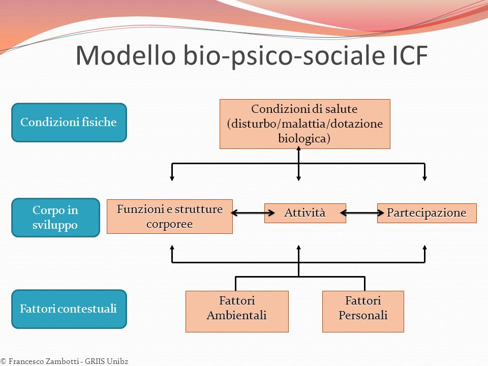 Condizioni di salute (disturbo/malattia/dotazione biologica) Fattori Ambientali Fattori Personali Funzioni e strutture corporee AttivitàPartecipazione