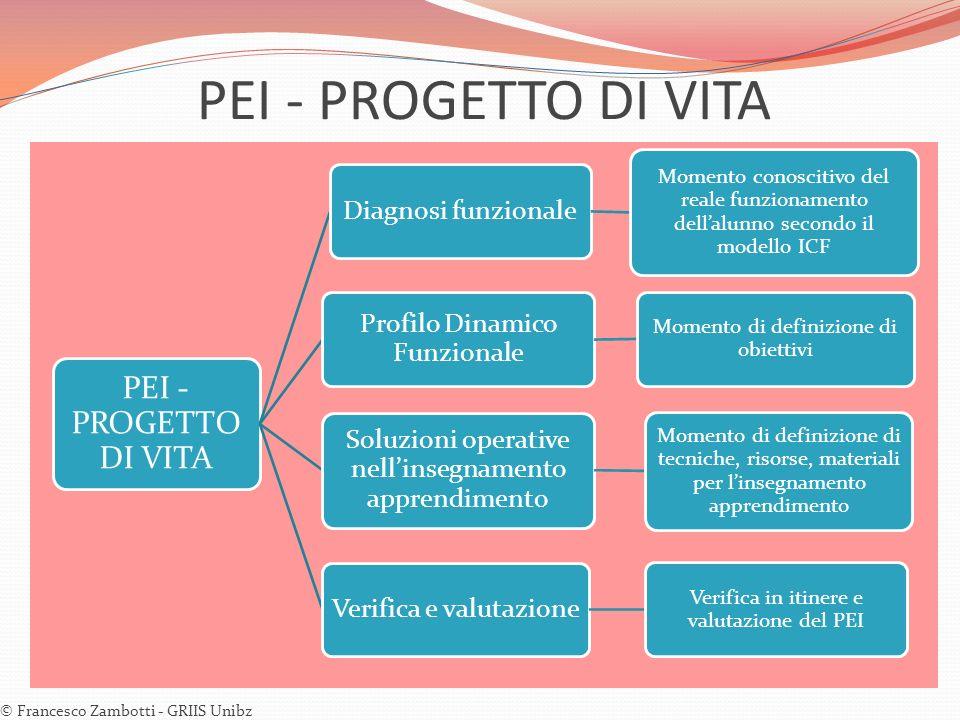 PEI - PROGETTO DI VITA © Francesco Zambotti - GRIIS Unibz PEI - PROGETTO DI VITA Diagnosi funzionale Momento conoscitivo del reale funzionamento della