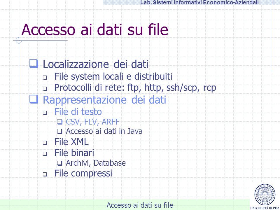 Accesso ai dati su file Lab. Sistemi Informativi Economico-Aziendali Accesso ai dati su file Localizzazione dei dati File system locali e distribuiti
