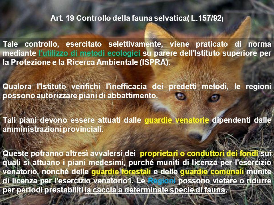 Art. 19 Controllo della fauna selvatica( L.157/92 ) Tale controllo, esercitato selettivamente, viene praticato di norma mediante l'utilizzo di metodi