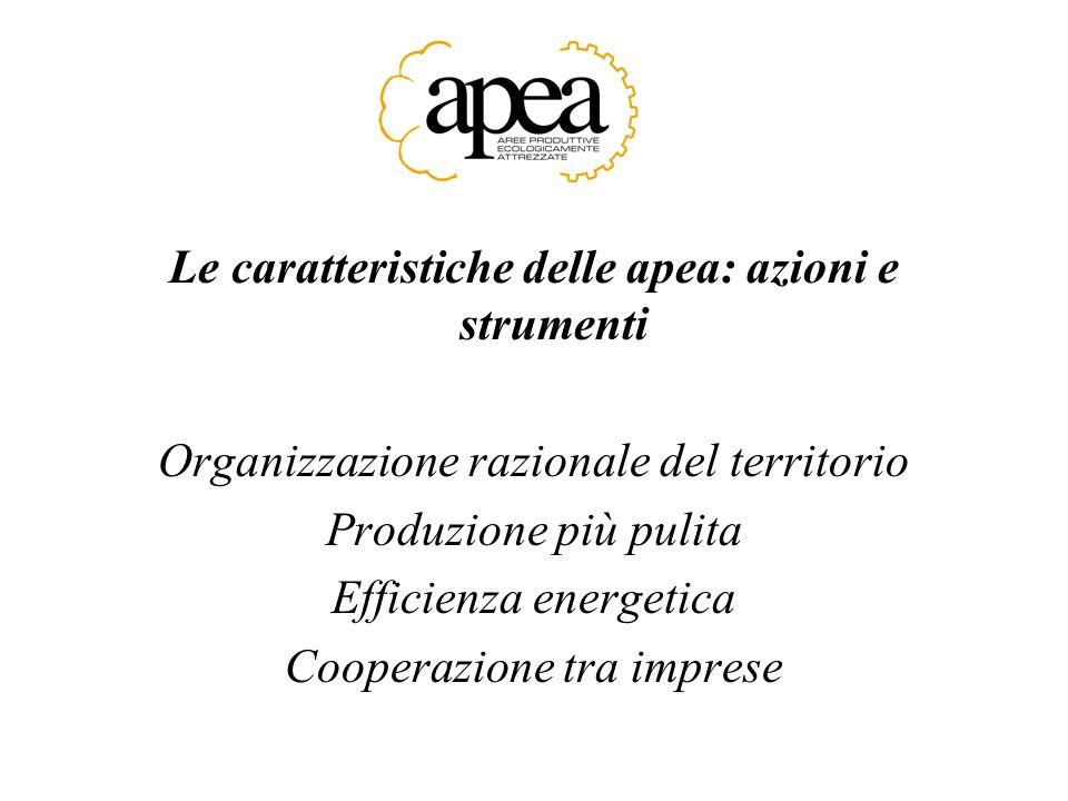 Le caratteristiche delle apea: azioni e strumenti Organizzazione razionale del territorio Produzione più pulita Efficienza energetica Cooperazione tra imprese