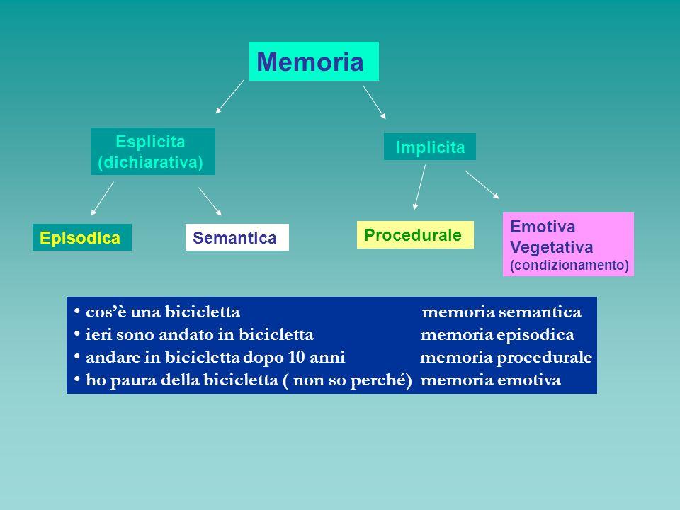 Memoria Esplicita (dichiarativa) Implicita EpisodicaSemantica Procedurale Emotiva Vegetativa (condizionamento) cosè una bicicletta memoria semantica i