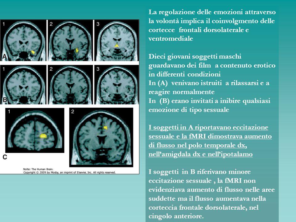 La regolazione delle emozioni attraverso la volontà implica il coinvolgmento delle cortecce frontali dorsolaterale e ventromediale Dieci giovani sogge