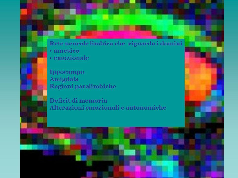 Circuito prefrontale dorsolaterale Aree prefrontali dorsolaterali 9,10 Area 47 Lobulo parietale superore Nucleo caudato (testa) Globo pallido interno Sostanza nera pars reticulata Globo pallido esterno Nucleo subtalamico Talamo (VA,DM) Nuclei del rafe, del tegmento mesencefalicoo, pars compacta sn, Funzioni esecutive