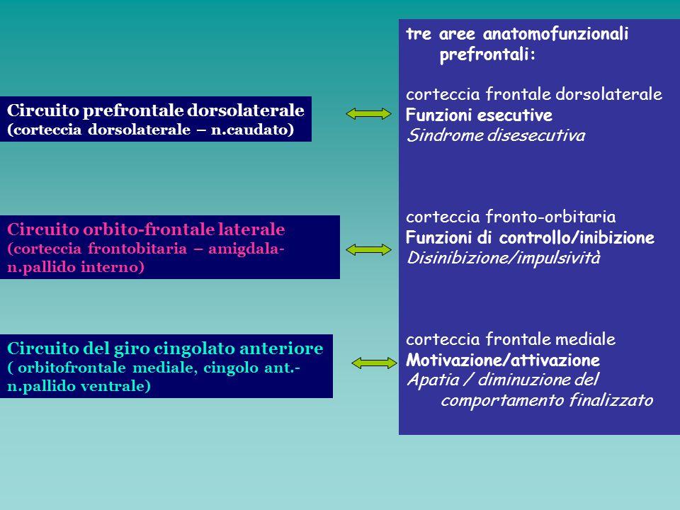 Circuito prefrontale dorsolaterale (corteccia dorsolaterale – n.caudato) Circuito orbito-frontale laterale (corteccia frontobitaria – amigdala- n.pall