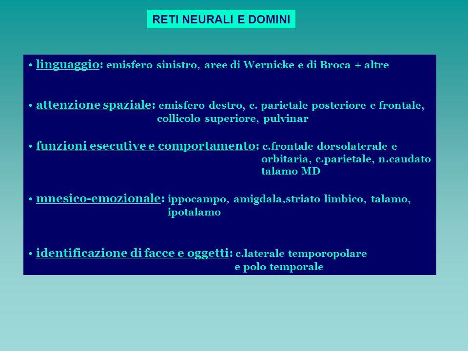 linguaggio: emisfero sinistro, aree di Wernicke e di Broca + altre attenzione spaziale: emisfero destro, c. parietale posteriore e frontale, collicolo