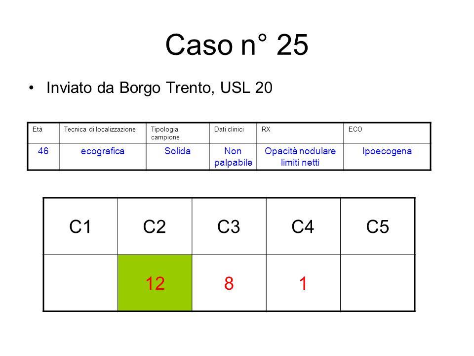 Caso n° 25 Inviato da Borgo Trento, USL 20 C1C2C3C4C5 1281 EtàTecnica di localizzazioneTipologia campione Dati cliniciRXECO 46ecograficaSolidaNon palpabile Opacità nodulare limiti netti Ipoecogena
