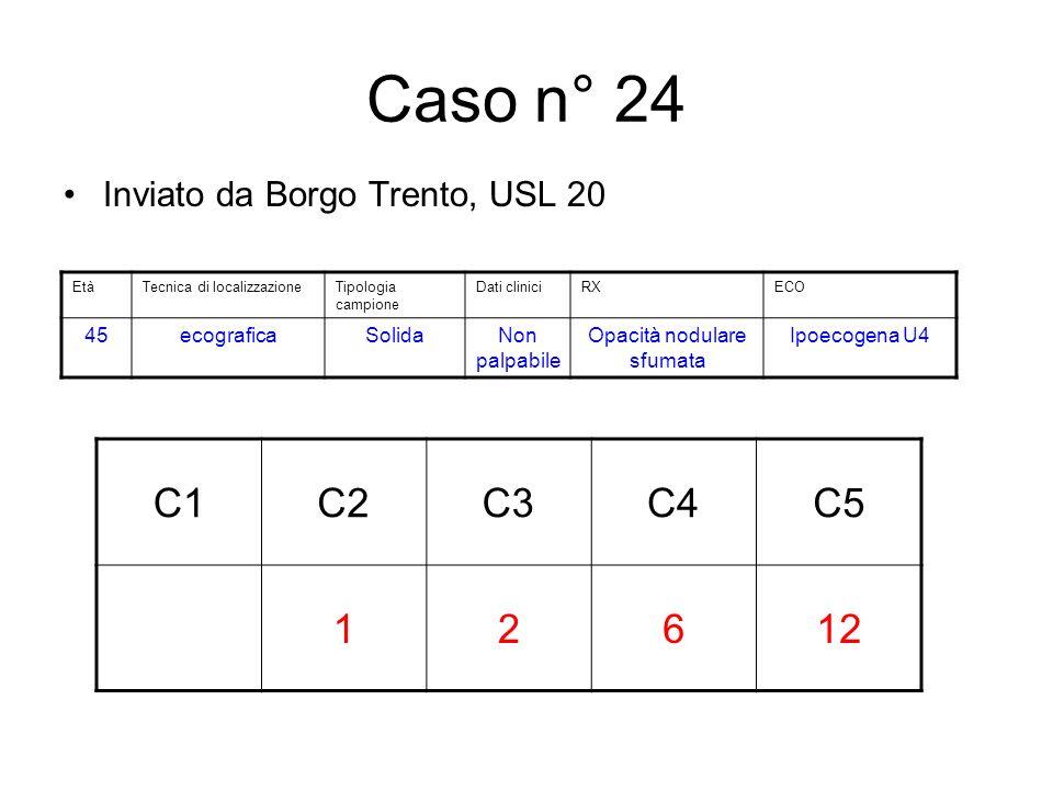 Caso n° 24 Inviato da Borgo Trento, USL 20 C1C2C3C4C5 12612 EtàTecnica di localizzazioneTipologia campione Dati cliniciRXECO 45ecograficaSolidaNon palpabile Opacità nodulare sfumata Ipoecogena U4