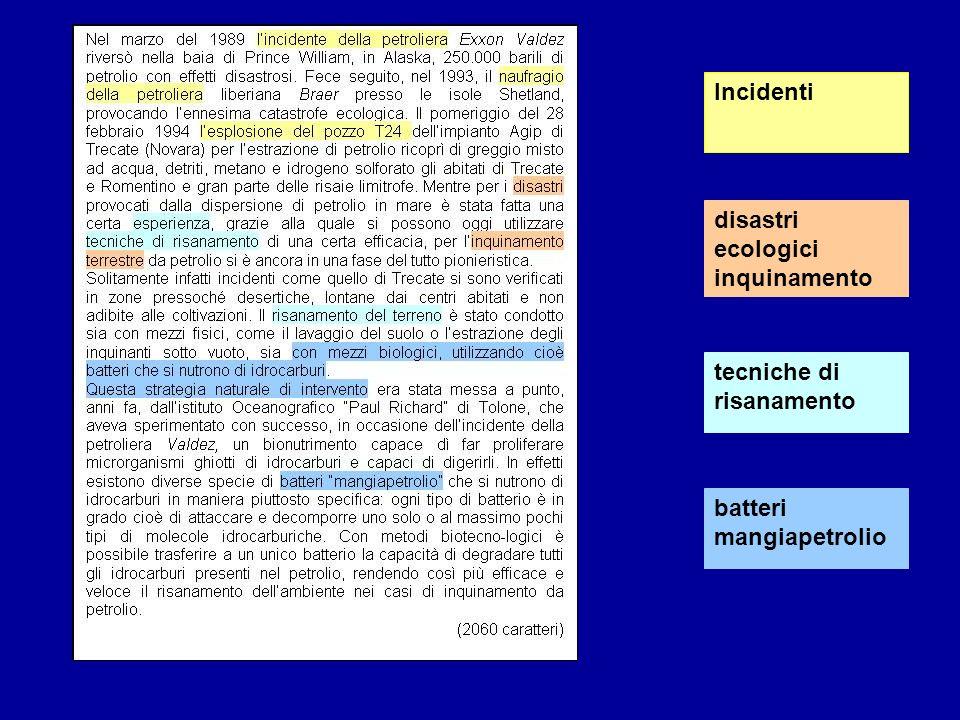 disastri ecologici inquinamento Incidenti tecniche di risanamento batteri mangiapetrolio