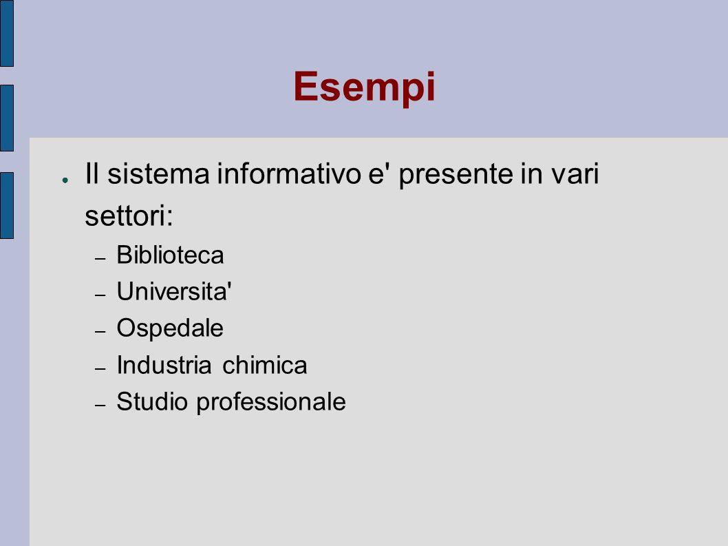 Esempi Il sistema informativo e' presente in vari settori: – Biblioteca – Universita' – Ospedale – Industria chimica – Studio professionale