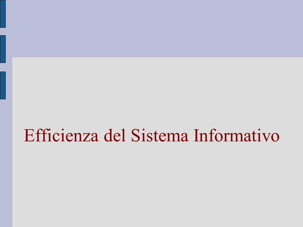 Efficienza del Sistema Informativo