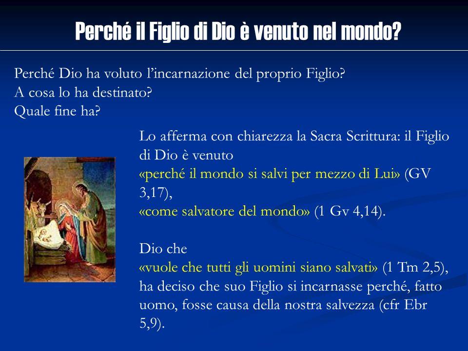 Lo afferma con chiarezza la Sacra Scrittura: il Figlio di Dio è venuto «perché il mondo si salvi per mezzo di Lui» (GV 3,17), «come salvatore del mond