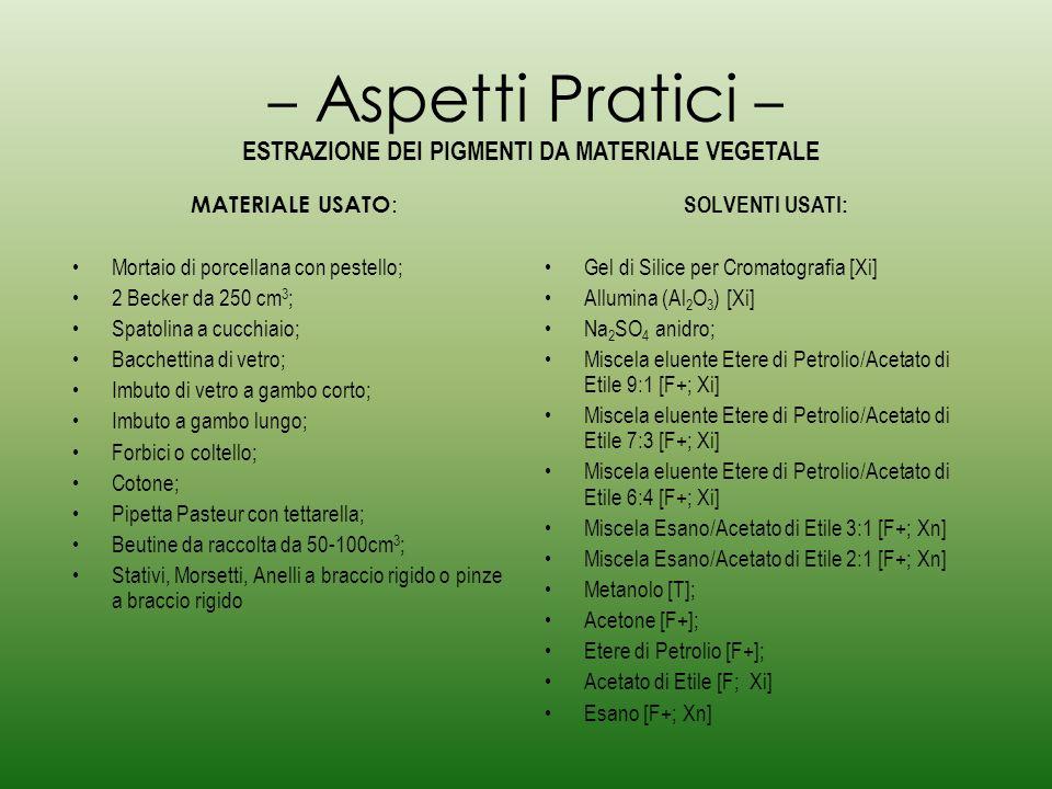 – Procedimento – Sminuzzare alcune foglie di spinaci, una carota, bucce darancia, un pomodoro, ecc.