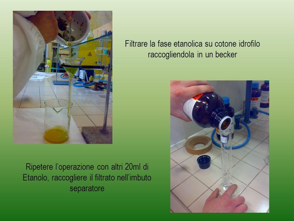 Ripetere loperazione con 40ml di Etere di Petrolio Trasferire nellimbuto separatore la fase etanolica e la fase eterea