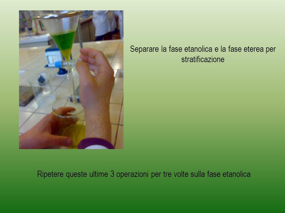 Infine la fase eterea viene seccata con il Solfato di Sodio anidro e viene concentrata al rotavapor fino a circa 2ml Far evaporare completamente il solvente.