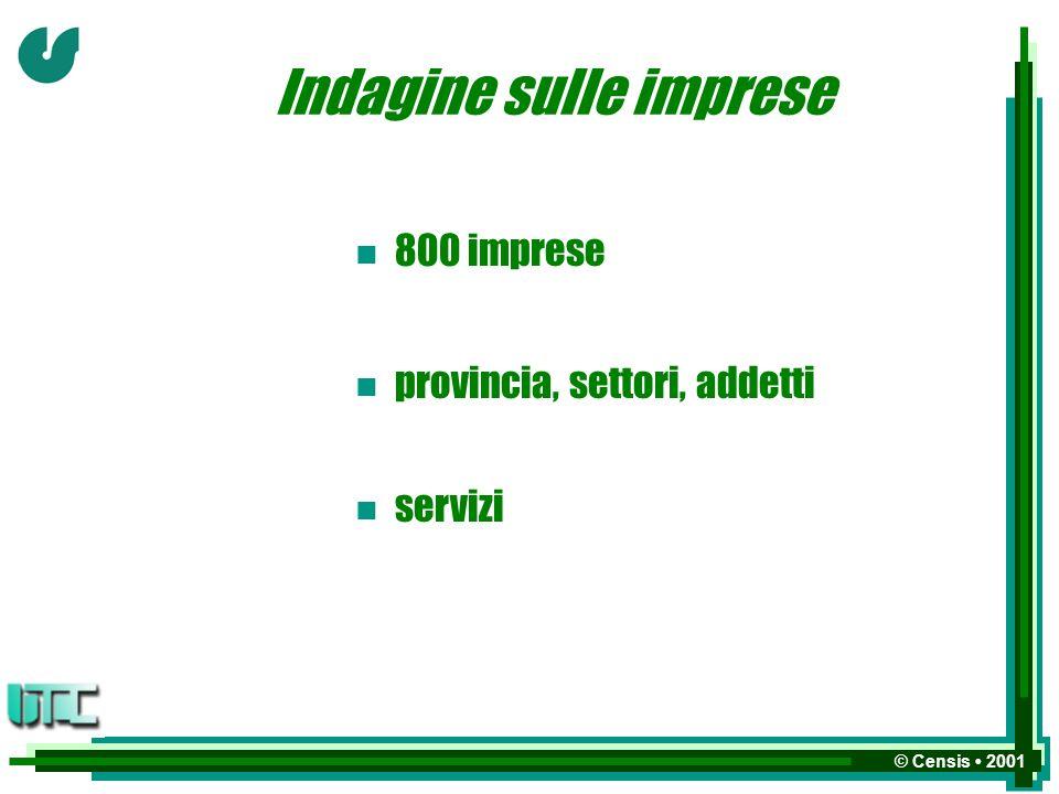 © Censis 2001 Indagine sulle imprese n 800 imprese n n provincia, settori, addetti n n servizi