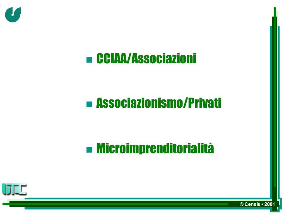 © Censis 2001 n CCIAA/Associazioni n Associazionismo/Privati n Microimprenditorialità