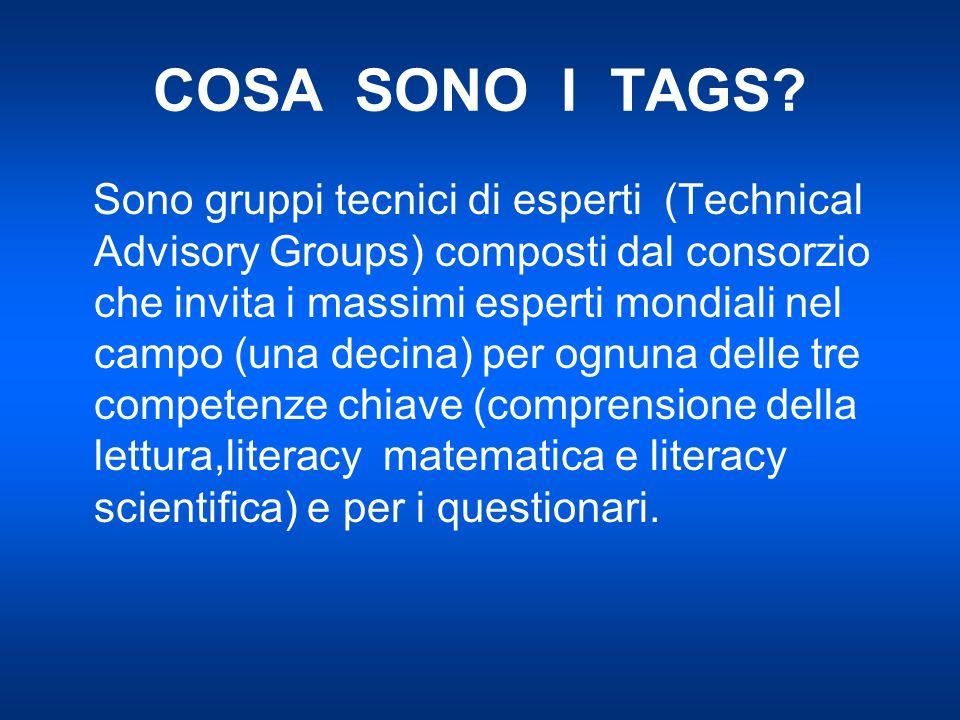 COSA SONO I TAGS? Sono gruppi tecnici di esperti (Technical Advisory Groups) composti dal consorzio che invita i massimi esperti mondiali nel campo (u