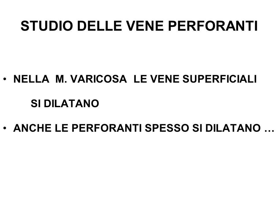 STUDIO DELLE VENE PERFORANTI NELLA M.