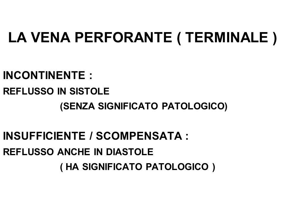 LA VENA PERFORANTE ( TERMINALE ) INCONTINENTE : REFLUSSO IN SISTOLE (SENZA SIGNIFICATO PATOLOGICO) INSUFFICIENTE / SCOMPENSATA : REFLUSSO ANCHE IN DIASTOLE ( HA SIGNIFICATO PATOLOGICO )